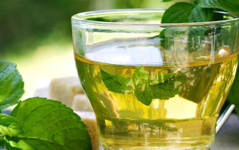 Funciones del te verde en ayunas