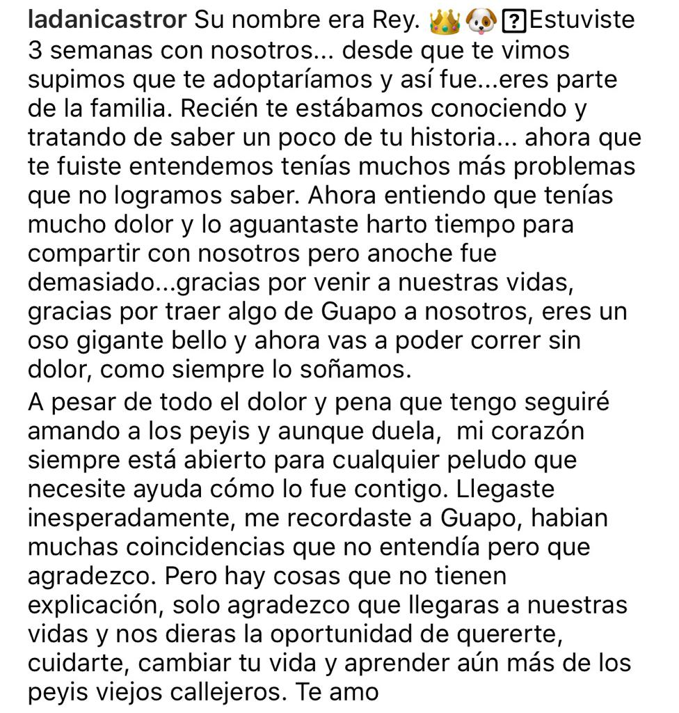 """Te seguiré amando"": Daniela Castro sufre por inesperada muerte"