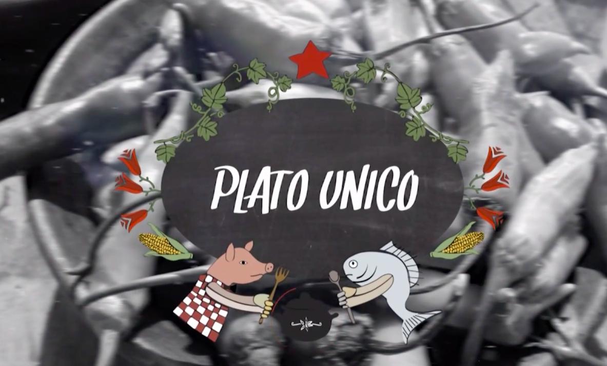 Plato Único