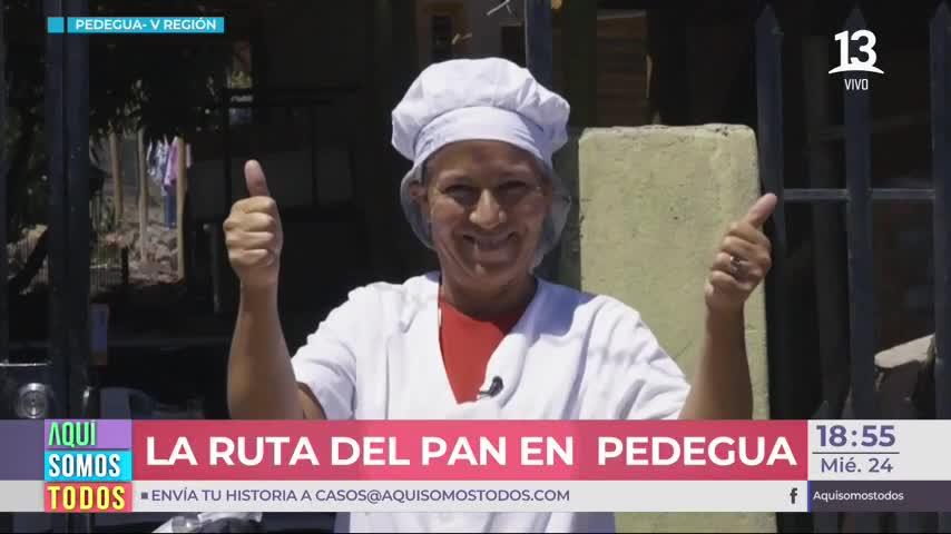 Pedegua