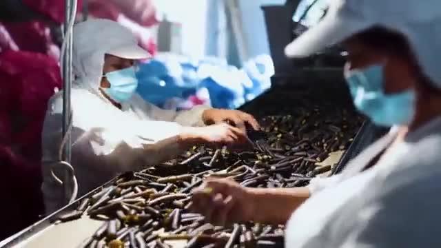 Alipio conoce industria de alimentos de cochayuyo