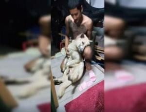 Perrito se hace el muerto para que no lo bañen