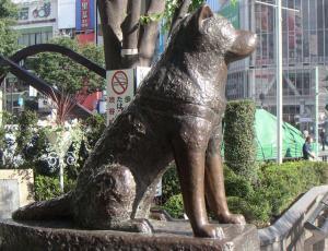 """Estatua de Hachiko en Japón se convierte en el """"Negro Matapacos"""""""