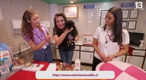 Juega Conmigo KidZania – Capítulo 6 – Conocimos el centro veterinario
