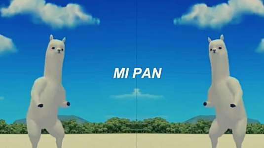 """""""Mi pan, su su sum"""": El origen del hit del momento que arrasa en Tik Tok"""
