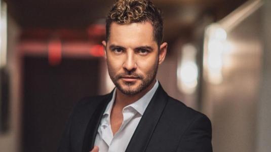 """David Bisbal y su triunfal regreso a la Quinta Vergara: """"Viña fue un trampolín para mi carrera musical"""""""