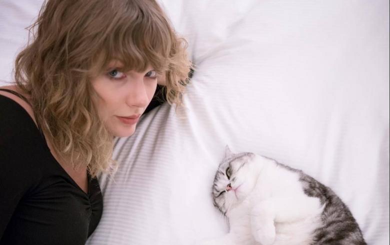 Taylor Swift se cambia al cine con una adaptación del musical