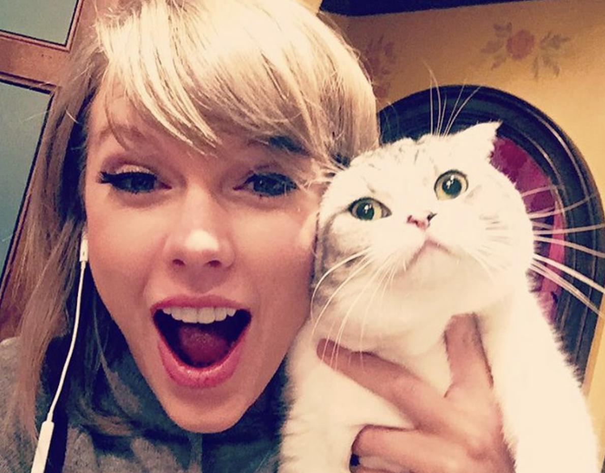 Taylor Swift entre los artistas confirmados para película del musical — Cats
