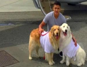 El lujoso avión privado en el que Alexis Sánchez viaja con sus queridos perros