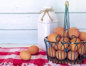 Animalistas afirman que las feministas no deberían comer huevo