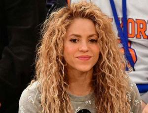 Shakira defiende a fan que violó seguridad para tomarse una selfie con ella