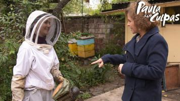 21 Mayo 2017: Santiago City Bees