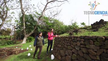 02 Octubre 2016: Rapa Nui, parte 2