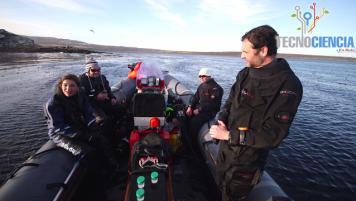 16 Octubre 2016: Islas Falkland-Malvinas, Parte 1