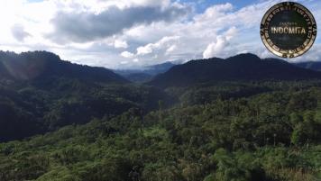 06 Noviembre 2016: Ecuador, zona norte y frontera con Colombia