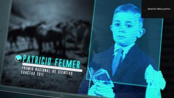 18 Junio 2017: Patricio Felmer